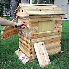 Wooden Beekeeping Beehive House + 7PCS Upgraded Auto Flow Bee Comb Hive Frames