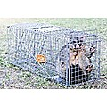 Trap Humane Possum Cage Live Animal Safe Catch Rabbit Cat Hare Fox Bird