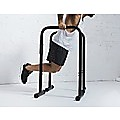 Chin Dip Parallel Bar Push Up Dipping Equipment