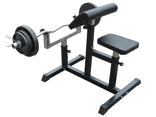 Preacher Curl Bench Weights Commercial Bicep Arms Sports