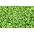 20mm Synthetic Artificial Grass Turf - 5m