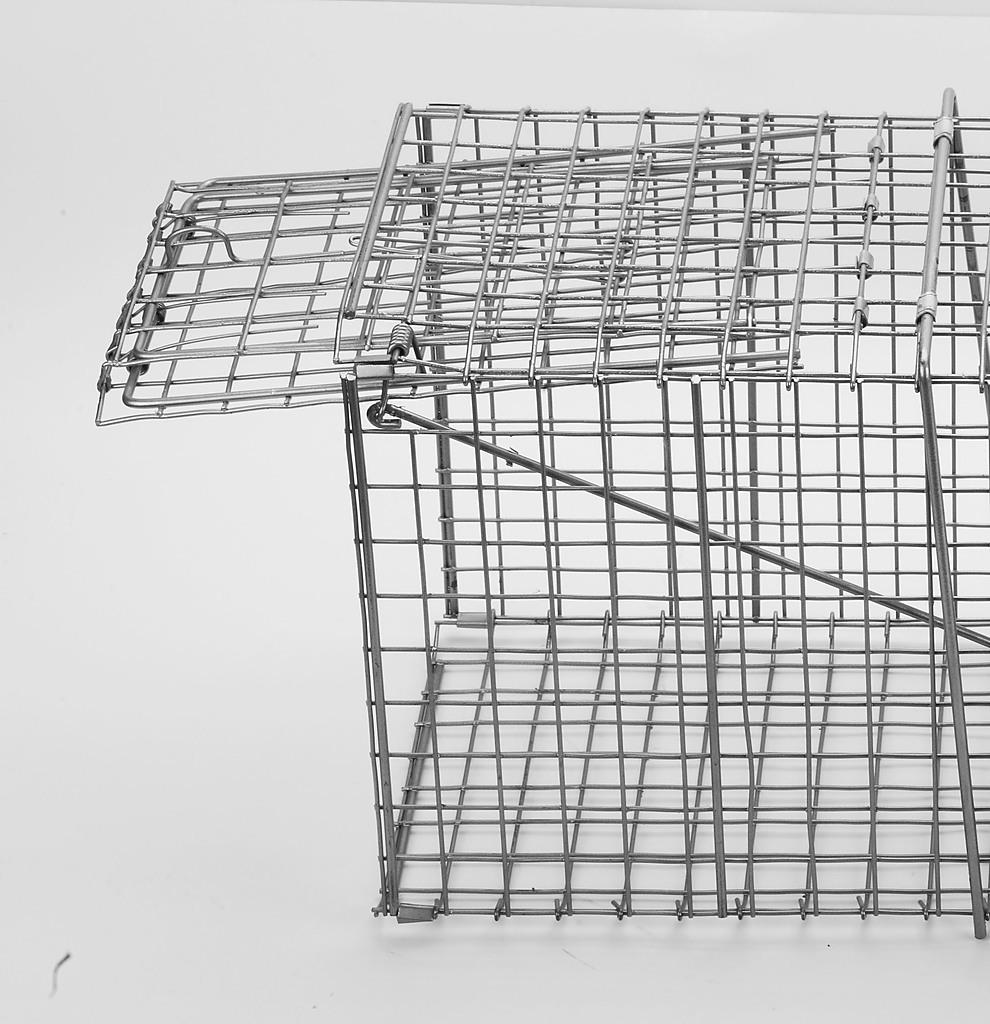 Humane Animal Trap Possum Cage Home Amp Lifestyle Gt Pet