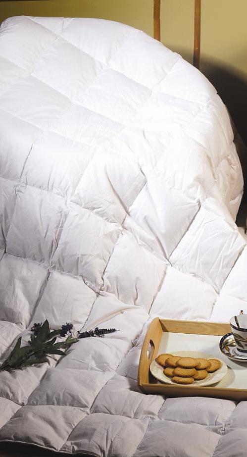 100 cotton white goose feather duvet. Black Bedroom Furniture Sets. Home Design Ideas